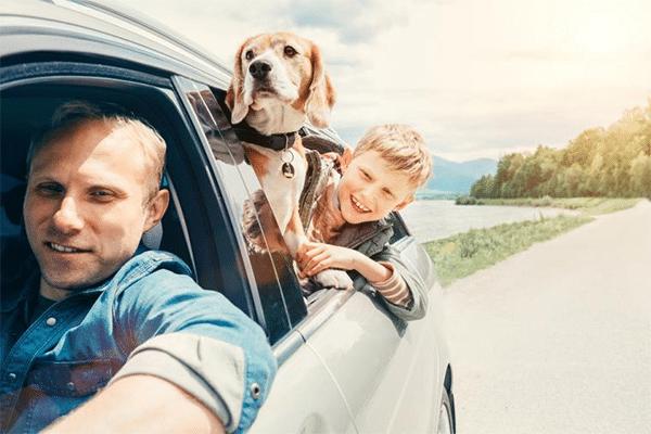 Kør selv til Gardasøen